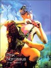 Pink Narcissus Cinémathèque de Toulouse Salles de cinéma