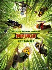 LEGO Ninjago : Le Film Le Duplexe Salles de cinéma