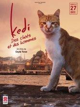 Kedi - Des chats et des hommes Luminor Hôtel de Ville Salles de cinéma