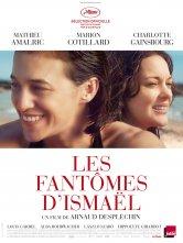 Les Fantômes d'Ismaël LA GRANGE DE LA FERME DES JEUX Salles de cinéma