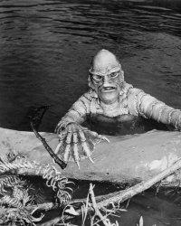 L'étrange créature du lac noir : un scénariste engagé pour le remake