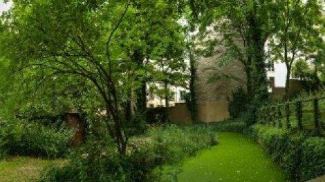 Jardin Sauvage Saint Vincent Sur Orange Videos