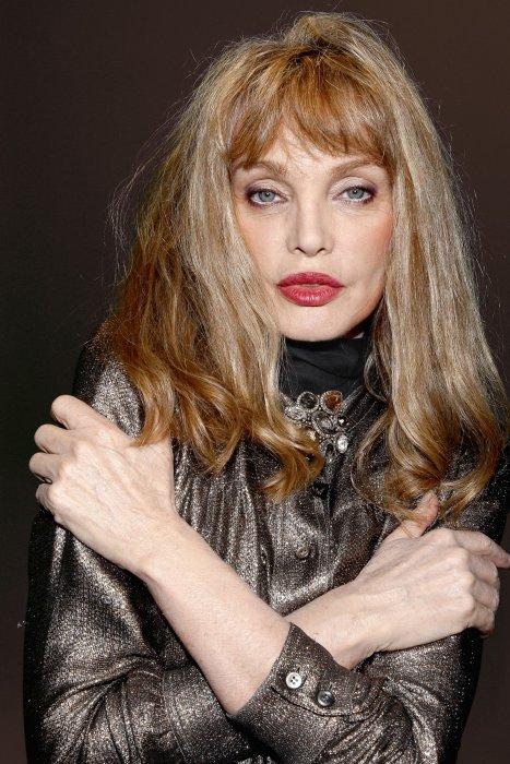 Portrait de Arielle Dombasle réalisé à Paris, le 17 décembre 2015.