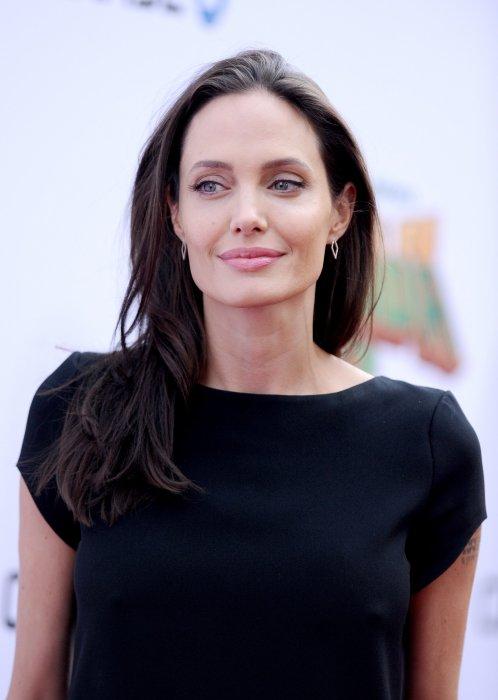 """Angelina Jolie assiste à la première du film """"Kung Fu Panda 3"""" à Los Angeles, le 16 janvier 2016."""