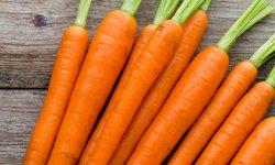 L'huile de carotte, le bon allié pour votre bronzage ?