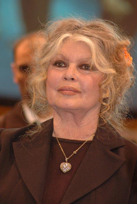Portrait de Brigitte Bardot réalisé à Paris, le 1er juin 2011.