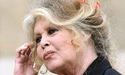 Brigitte Bardot :