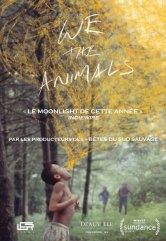 We The Animals Cinémas Studio Salles de cinéma