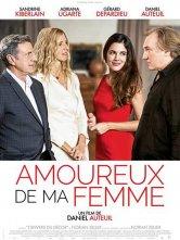 Amoureux de ma femme Gaumont Toulouse Wilson Salles de cinéma