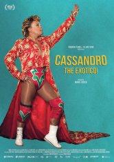 Cassandro the exotico ! Mega CGR Salles de cinéma