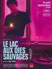 Le Lac aux oies sauvages Cine-TNB Salles de cinéma