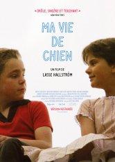 Ma vie de chien Cinéma L'Aiglon Salles de cinéma