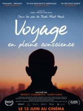 Voyage en pleine conscience Les 3 Cinés - Robespierre Salles de cinéma