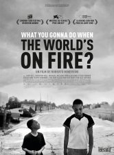What You Gonna Do When The World's On Fire? Diagonal Cinémas Salles de cinéma