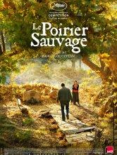 Le Poirier sauvage Le Cinématographe Ciné Nantes Loire Atlantique Salles de cinéma