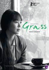 Grass odyssée Salles de cinéma