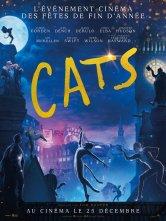 Cats Le Casino Salles de cinéma