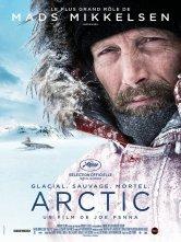 Arctic Cinema Espace Moliere Salles de cinéma