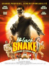 Black Snake, la légende du serpent noir CGR Bourges Salles de cinéma