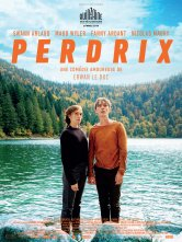 Perdrix Palace Epinal Salles de cinéma