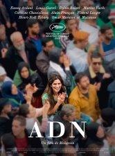ADN Ariel - Centre ville Salles de cinéma