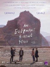 An Elephant Sitting Still CINEMAS VICTORIA Salles de cinéma