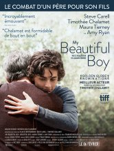 My Beautiful Boy Cinema Pathe Gaumont Salles de cinéma