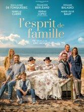 L'Esprit de famille CGR Troyes Ciné City Salles de cinéma