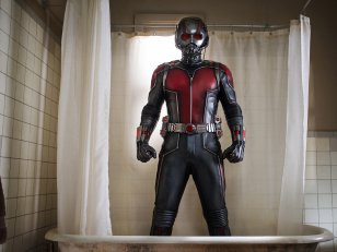 Ant-Man and The Wasp : Adam McKay de retour à l'écriture ?
