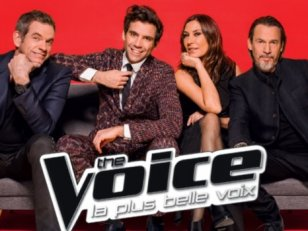The Voice 5 : qui a le plus de chance de gagner ?