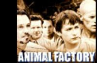Animal Factory - bande annonce - VOST - (2001)