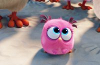 Angry Birds - Le Film - bande annonce 5 - VOST - (2016)