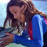 Bernie The Dolphin - Bande annonce 1 - VO - (2018)
