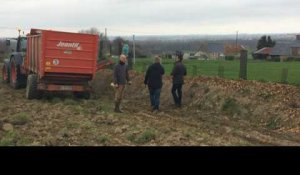 Haiecobois replante le bocage normand
