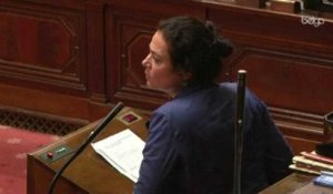 Scission de BHV : Réaction de Christine Defraigne (MR)