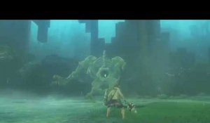 Extensions du jeu The Legend of Zelda: Breath of the Wild sur Nintendo Switch