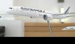 Quel avenir pour Air France?