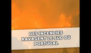Des incendies ravagent le sud du Portugal
