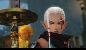 Hyrule Warriors - Impa & Naginata