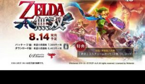 Hyrule Warriors - Link Video
