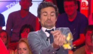 Bertrand Chameroy se prend une patate dans TPMP  - ZAPPING PEOPLE DU 11/04/2014