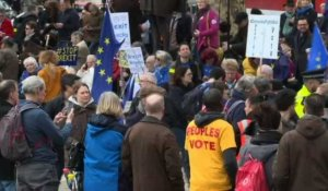 Londres: manifestation anti-Brexit devant le Parlement