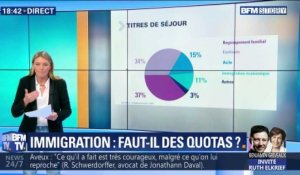 Immigration: faut-il des quotas ?