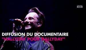 Johnny Hallyday : David, son seul héritier ? Un documentaire l'affirme