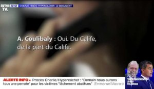Charlie Hebdo/Hyper Cacher : le document BFMTV
