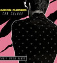 I Can Change (Michael Brun Remix)