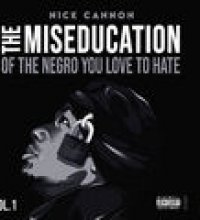 The Miseducation of The Negro You Love to Hate