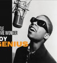 Little Stevie Wonder - Boy Genius