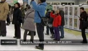 Sculptures sur glace au Japon - no comment