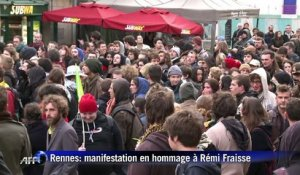 Fraisse: 300 manifestants à Rennes malgré l'interdiction